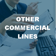 Other Commercial Lines